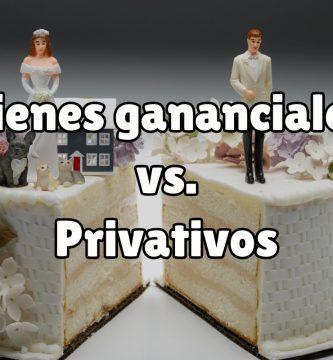 Diferencias entre bienes gananciales y privativos